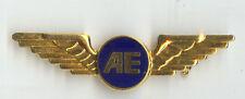 Air Europe UK Defunct Airlines Flight Attendant Wings Badge