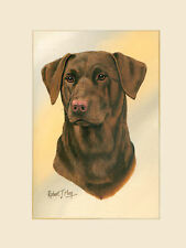 Original Chocolate Labrador Painting by Robert May