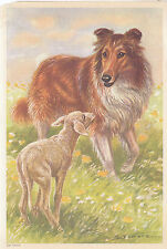 Collie Dog in Flowering Meadow with Lamb Sheep Dogs Vintage Art  Print 1960