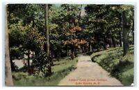 Postcard Lover's Lane, Grove Springs, Lake Keuka, NY 1914 B30
