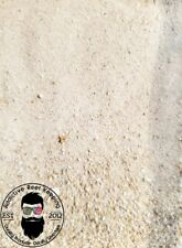 1/2 CUP LIVE Sand Aragonite Fine- SEED YOUR SALTWATER TANK!!