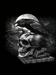 ALCHEMY ART POES RAVEN - 3D FANTASY SKULL AND RAVEN PICTURE PRINT 300mm x 400mm