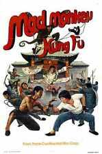 Mad Monkey Kung Fu cartel impresión fotográfica 01 A4 10x8