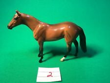 Peter Stone Stonechip, Light Bay Thoroughbred With White Hind Left Foot