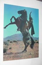 Zorro Poster # 1 Duncan Regehr and Tornado