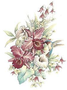 Orchid Flower Hummingbird Bird Select-A-Size Waterslide Ceramic Decals Ox
