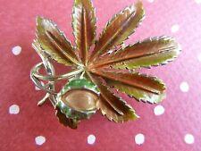 vintage       exquisite brooch horsechestnut .small