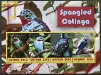 Guyana 2019 MNH Spangled Cotinga 4v M/S Cotingas Birds Stamps
