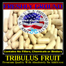 TRIBULUS FRUIT With Absolutely No Additives High Potency 100 Vegetarian Capsules