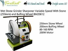 200W 250mm Wet Stone Grinder Sharpener Variable Speed with 200mm Buffing Wheel