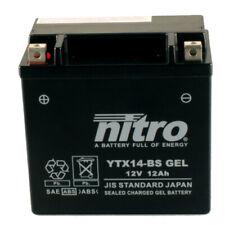 Batterie Hyosung GV 650 P i Pro FI Delphi Bj.17 Nitro YTX14-BS GEL geschlossen