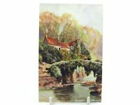 Antique colour printed postcard Jesmond Dene Newcastle S Hildesheimer & Co