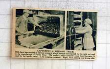 1919 Potatoes Used In Manufacture Of Farina Flour For Textile Trade