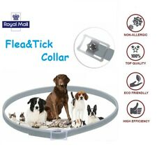 Adjustable Pet Flea Neck Collar For Dogs Cats Flea and Tick 8 Months Protection