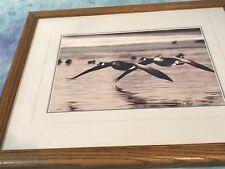 VINTAGE THOMAS D MANGELSEN SIGNED -1977 Geese Flying-Limited Ed Numbered 75/850