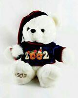 Dan Dee Teddy Bear 2002 PLUSH Stuffed Animal Snowflake White Holiday Christmas