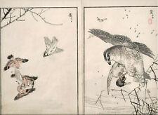 1881 double woodblock prints, Bairei, Birds Flowers, plate 9, Vol 1