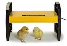 Chick Brooder Baby Chicks Warmer Bulb Ducklings Quail Chicken Lamp Light Watt