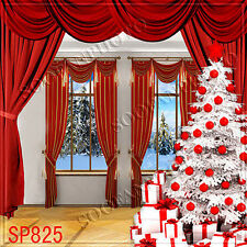 Christmas 10'x10' Computer-painted (CP) Indoor background backdrop SP825B881