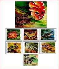 SOM98092 Reptiles 7+ blocks
