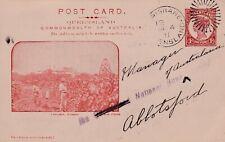"""VINTAGE POSTCARD QUEENSLAND COMMONWEALTH OF AUSTRALIA """"Nudgee Vinyard 1900s"""