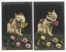 2 x RAGDOLL CAT Bi Color long haired. SET of 2 Old Real Photo postcard 1910s