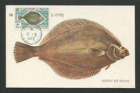 ST. PIERRE MK 1972 FISCHE FISH PECHE MAXIMUMKARTE CARTE MAXIMUM CARD MC CM d7049