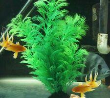 Aquarium Underwater Artificial Plants Decoration Water Grass Fish Tanks Ornament