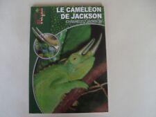 Le caméléon de Jackson Les guides  Reptil Mag -Animalia 2007