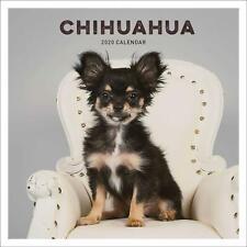 Chihuahua 2020 Offiziell Quadratisch Wand