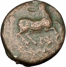 Philip II Alexander the Great Dad OLYMPIC GAMES Ancient Greek Coin Horse i51640