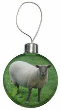 Sheep Intrigued by Camera Christmas Tree Bauble Decoration Gift, ASH-5CB