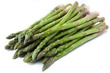 120 Graines d Asperge Colossal de Connovers Potager Légumes Plantes