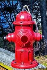 Fire Hydrant Birdhouse and Feeder. Firefighter's Fire Hydrant Birdhouse Gift