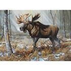 Full Drill Diamond Painting Embroidery Cross Stitch Moose Embroidery Home Decor