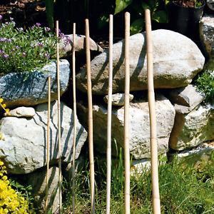 bellissa - Bambusstäbe, Bambusstangen, Rankstab -  Diverse Sets