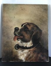 Early Antique St Bernard Dog On Canvas - Signed