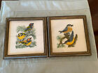VINTAGE SET OF 2 HAND EMBROIDERED FRAMED WALL TAPESTRIES BIRDS