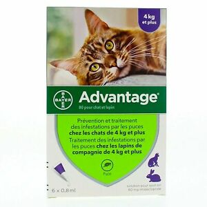 Bayer Advantage Flea Remedy for Cats Over 9 lbs - 6 Month Pack