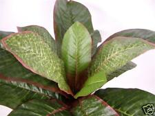 Set of 6 Artificial Silk Hoffmannia Refulgens Bush