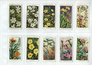 1930's WILLS CIGARETTE CARDS WILD FLOWERS 2nd Series - FULL SET 50 - VERY GOOD