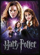 Puzzle 500 Teile - Harry Potter: Granger (aus Schaumstoff) von Wrebbit