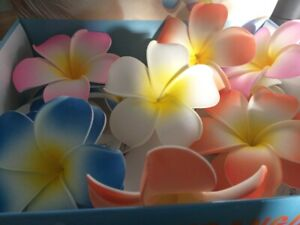 ARTIFICIAL FLOATING FRANGIPANI FLOWER POND FEATURE COLOURFUL LARGE 12CM