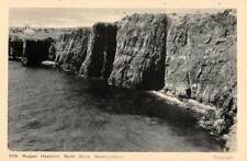 NEWFOUNDLAND, CANADA, HEADLAND ON NORTH SHORE, AYRE & SONS LTD PUB c 1930's