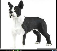 Boston Terrier Dog Figurine Pet Black & White Safari Ltd Toy Animal Canine New *