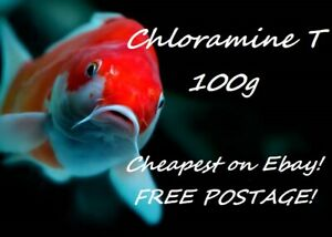 100g Chloramine-T Anti Bacterial Parasite Treatment for Koi & Ponds - FREE POST