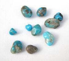 10 Campitos CLOSED MINE Turquoise Natural Nugget LOT specimen Rock Lapidary NR!!