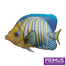 Primus Metal Regal Angelfish Tropical Fish Wall Art Hand Finished PA2060