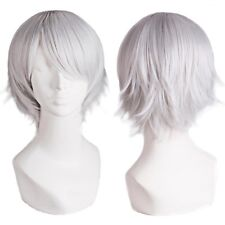 Fashion Men's Short Silver Wig Synthetic Heat Resistant Cosplay Costume Hair Wig