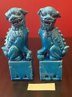 Pair of Vintage Chinese Turquoise Blue Porcelain Foo Dog Lion 8 5  Tall